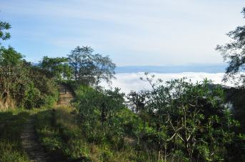 motorbike road and cloud forest