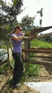 Volunteer with saw constructing