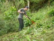 RMV volunteer working